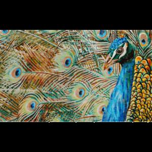 PEACOCK - Mosaic Art - Glass Tiles